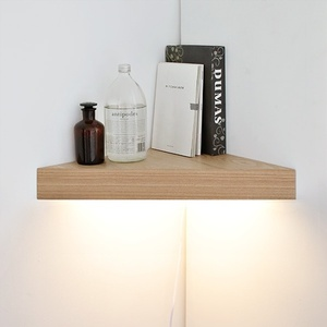 [���������] ���������� [BB] [LED]�ڳ� ���� ������-���̸�